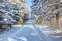 Winter Scenes Cherry Valley