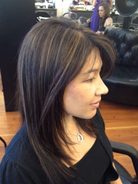 partial highlights for dark brown hair partial highlights on black hair hairs picture gallery