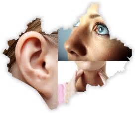 Ear Nose And Throat George Murty Consultant Ear Nose And Throat Surgery And