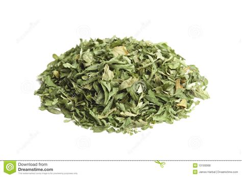 Parsley Flake pinch of dried parsley flakes stock photo image 13193068