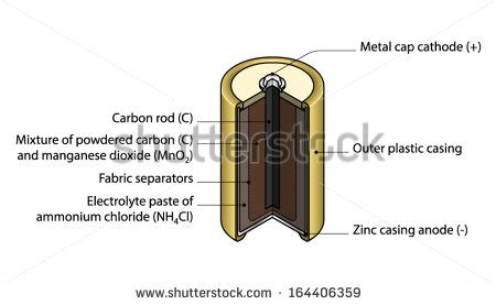 cross sectional cut crosssection cutaway diagram dry cell battery stock vector