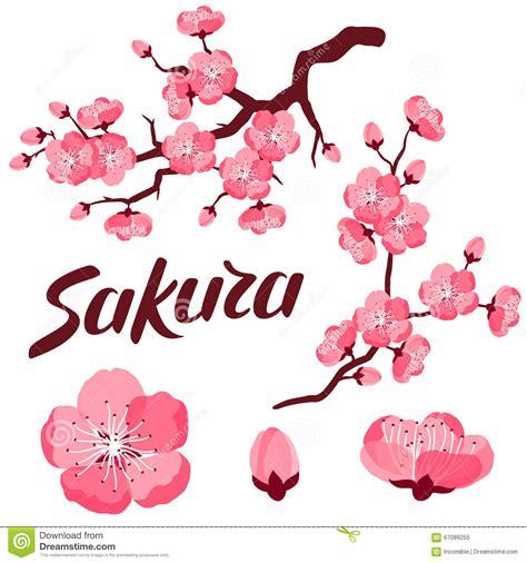 fiori stilizzati giapponesi insieme di giapponese dei rami e dei fiori