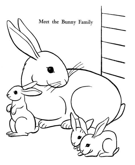 coloring pictures of baby bunnies bunny rabbit pics coloring home