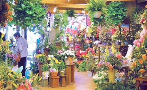 interior decorator ta fl flowers floral shop