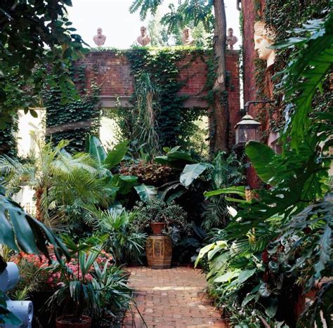 best 25 small tropical gardens ideas on