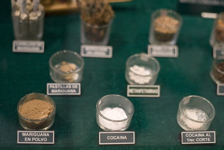 diversi tipi di droghe museum reveals secrets of smuggling