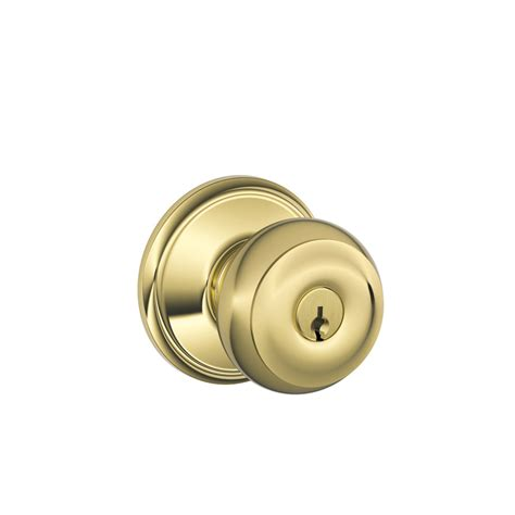 shop schlage georgian bright brass keyed entry door knob