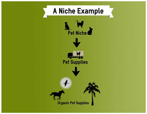 exle of niche what is a niche in affiliate marketing