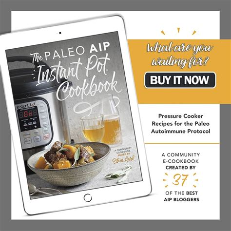 paleo instant pot cookbook 200 amazing paleo diet recipes books instant pot giveaway the aip paleo instant pot cookbook