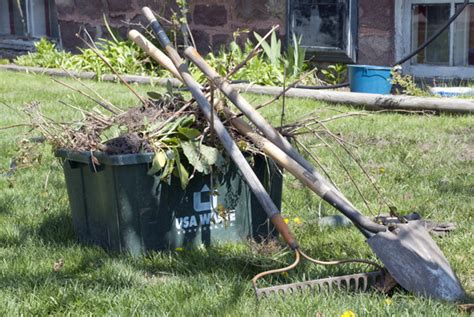clean up backyard spring cleaning for the yard kramer tree specialists inc