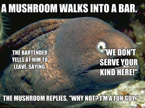 Mushroom Meme - a mushroom walks into a bar the mushroom replies quot why
