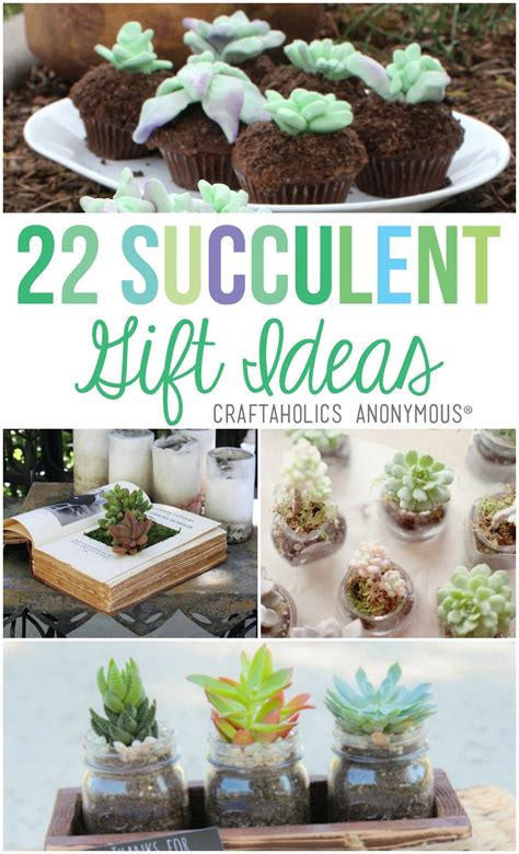 Craftaholics Anonymous®   22 Succulent Gift Ideas