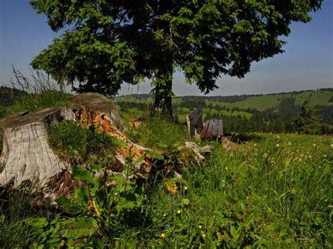 Garten Und Freizeit 4027 by Eckersdorf Fr 228 Nkische Schweiz Schloss Fantaisie Wandern