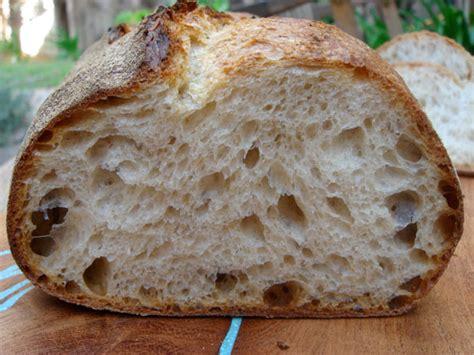 50 hydration sourdough starter norwich sourdough bread recipe