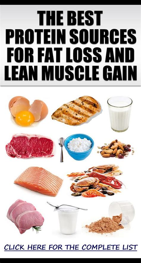 top protein bars building muscle the best muscle building protein sources for bodybuilding