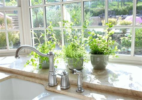 Herbs For Kitchen Window Sill Garden Window And Herbs Sweet Bg Kitchen Ideas