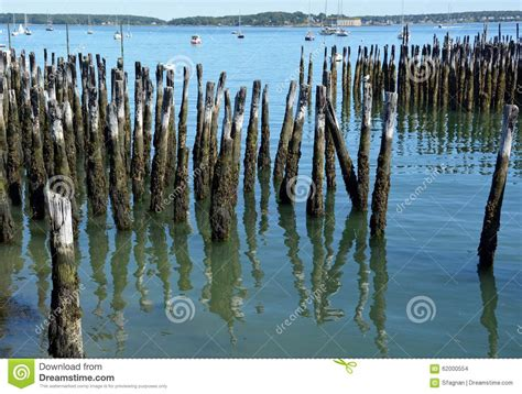 wood pilings portland maine stock photo image