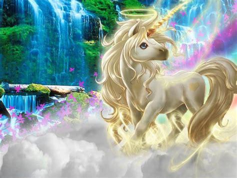 Tiger Wall Mural beautiful 3d picture unicorn silk clouds rainbow wallpaper