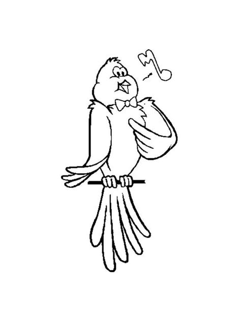 coloring pages canary bird canary coloring page az coloring pages