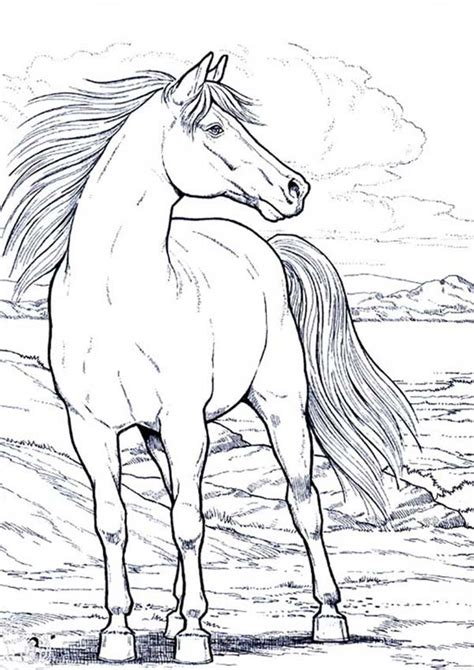 paint horse pages coloring pages