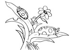 ladybug coloring pages coloring now 187 archive 187 ladybug coloring pages