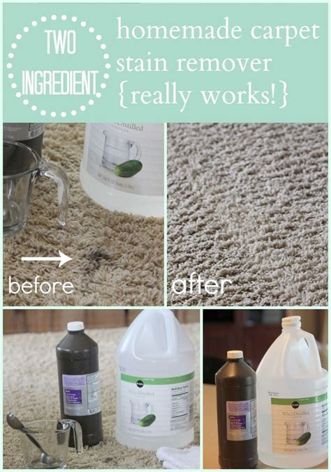 Diy Rug Cleaner by Carpet Cleaner Carpet Cleaners Carpet