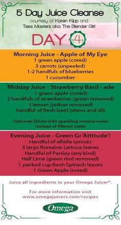 Detox Juice Recipes Australia by 4 Day Juice Cleanse Juice Cleanse Smoothie And Juicing
