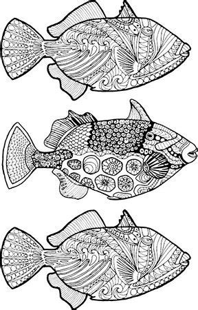 New Illustrations for Adult Coloring   Adult coloring