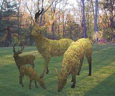 deer topiary 1000 images about deer top on topiaries deer