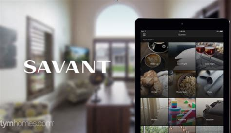 what does savant home automation systems offer hdh tech