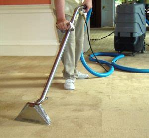 rug cleaning sydney carpet cleaning in sydney carpet cleaning eastern suburbs