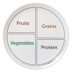 food group myplate outline plate zazzle