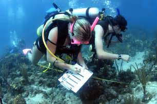 What Is The Description Of A Marine Biologist by Top Marine Biology Colleges In The Us
