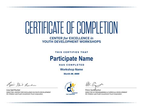 professional certificates templates volunteer certificate template cake ideas and designs
