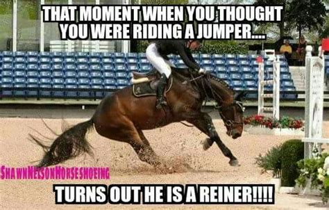 Horse Riding Meme - 1530 best images about equestrian problems on pinterest