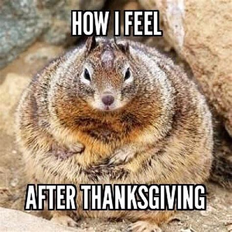 After Thanksgiving Meme - christmas season starts the after thanksgiving funny meme