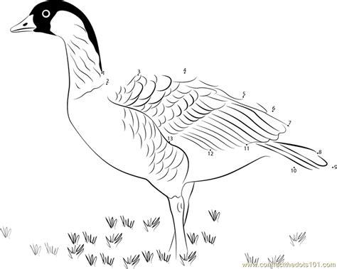 hawaiian birds coloring pages hawaii state bird coloring page coloring pages