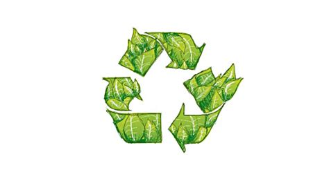 The Benefit Of Recycling Organic Waste Waste Wise Products
