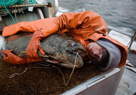 how to be an alaskan fisherman by corey arnold deadliest