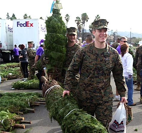 trees for troops how the holidays arrive for the military