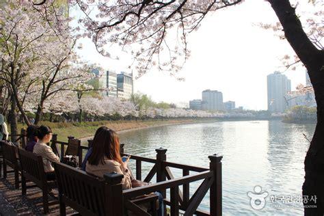 Gembok Blossom 10 tempat nge date paling romantis di korea selatan page
