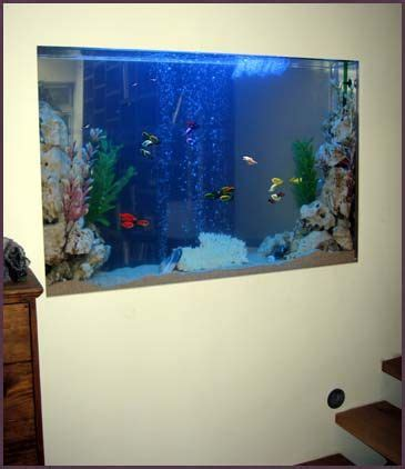 aquarium design jobs 17 best images about tank in the wall on pinterest home