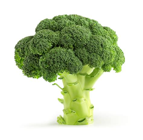 5 vegetables that burn belly 10 veggies that burn belly
