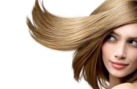 Lu Projector Fino jose t 233 llez peluqueros 161 161 cortes ideales para el cabello