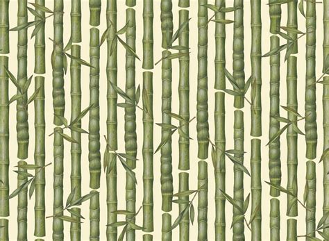 Paper From Bamboo - bamboo wrapping paper ebay