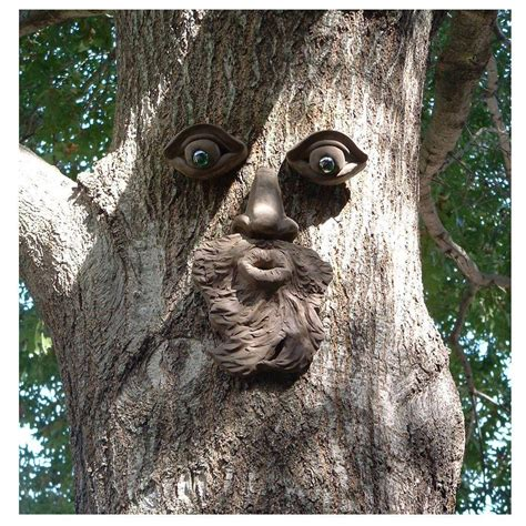 tree faces genuine tree peeple whistlin pete tree face 104 gtp hd