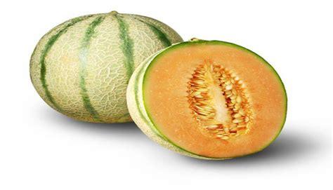 imagenes de semillas varias 4 semillas de frutas que te har 225 n perder peso fotos