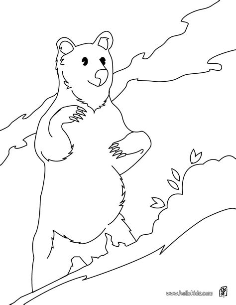 Collection of Realistic Sun Bear Coloring Page Free Printable ...