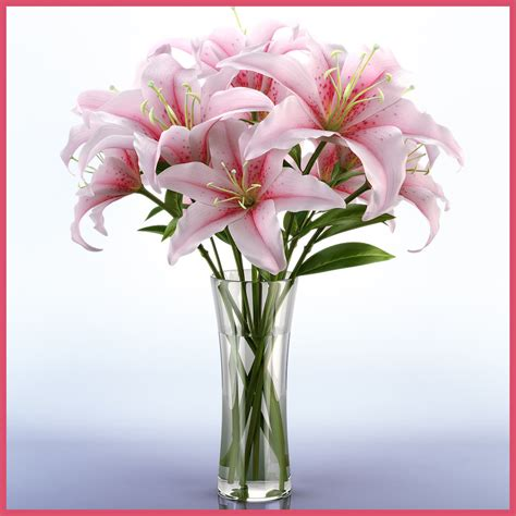 Lilly Vases by 3d Model Of Realistic Vase