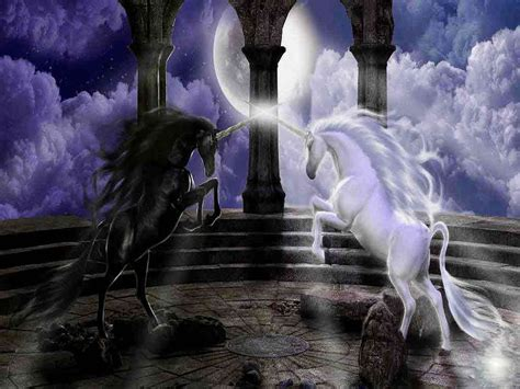magische le unicorns wallpapers wallpaper cave